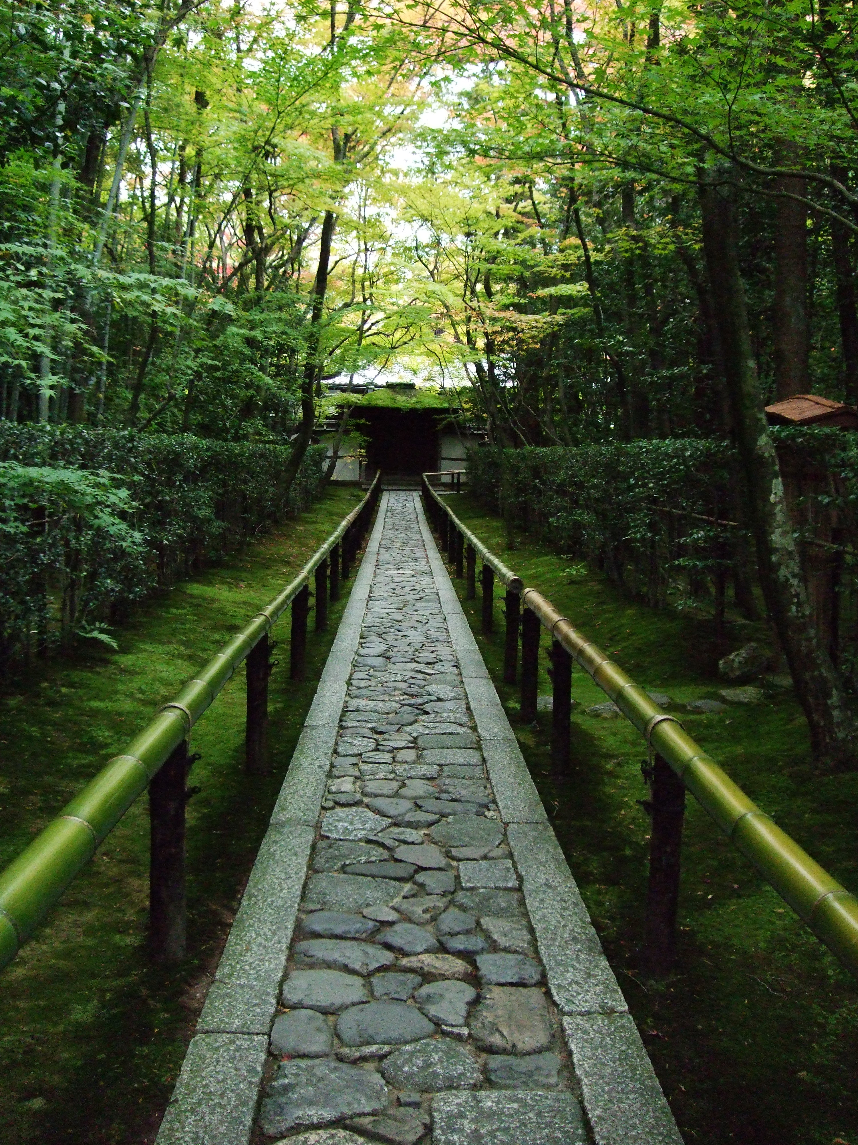 japanese garden kyoto - photo #12