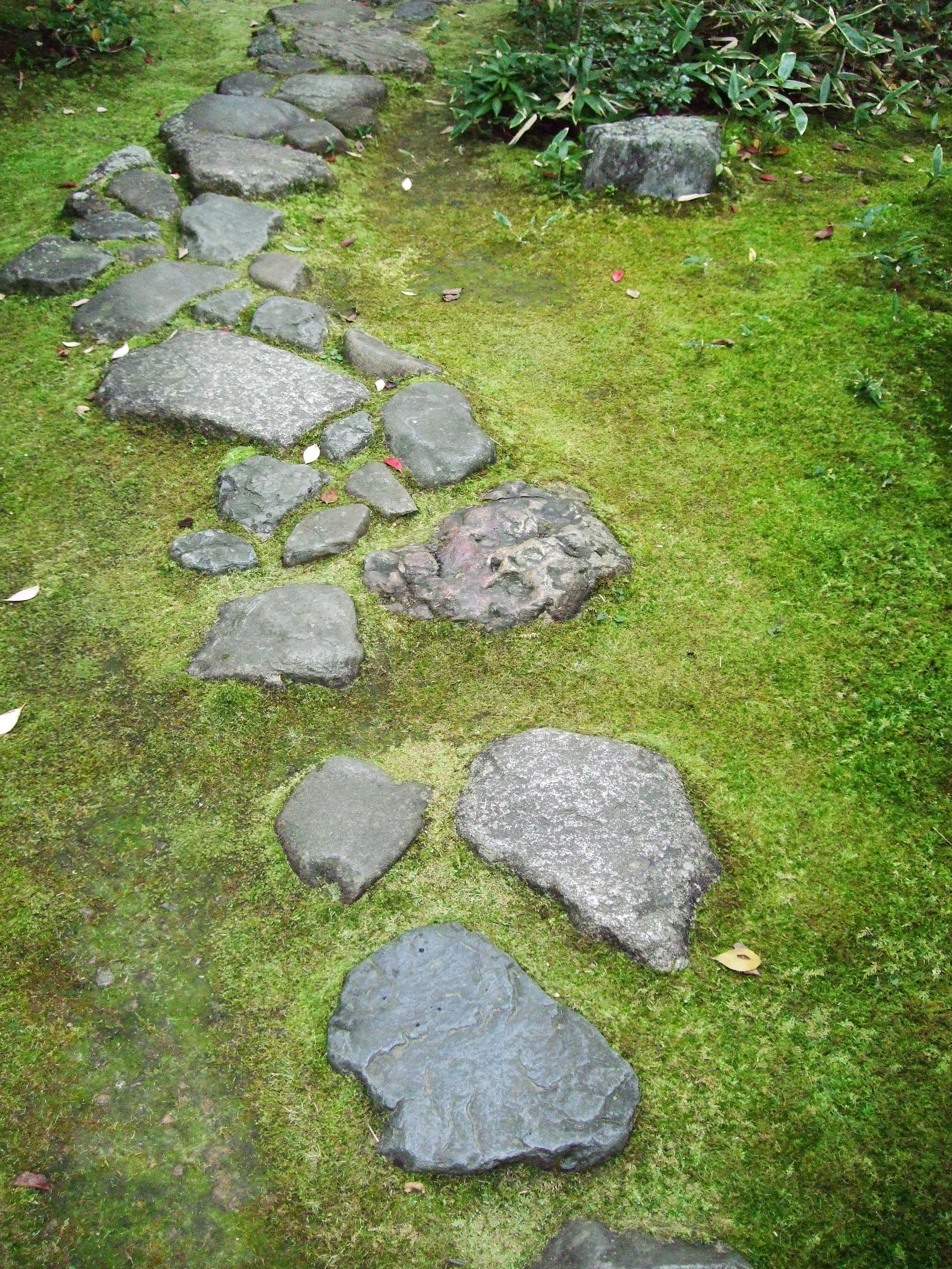 Kyoto japan stepping stones emily wheeler for Japanese garden stones