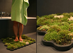 moss_carpet_layout